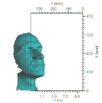 Abbildung 7: Personenkopf
