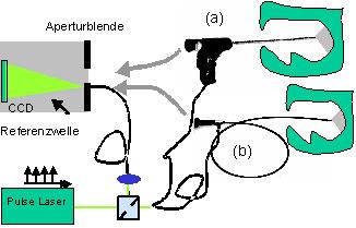 Bild 3: Optischer Aufbau mit (a) starrem und (b) flexiblem faseroptischen Endoskop zur endoskopischen Untersuchung mit gepulster digitaler Holografie