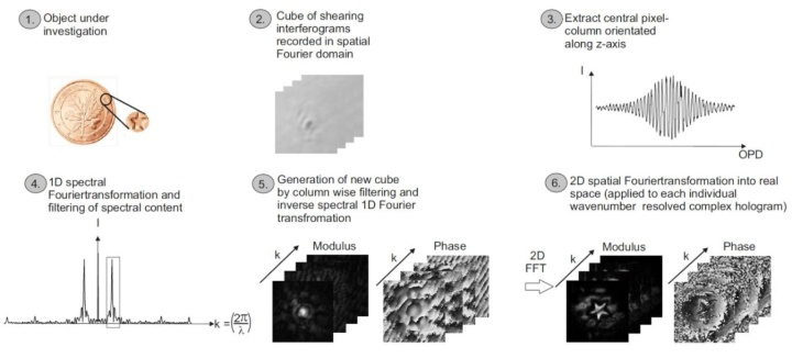 Figure 1 Flowchart diagramm displaying the different image processing steps applied to the recorded phase stepped shearing interferograms (c)