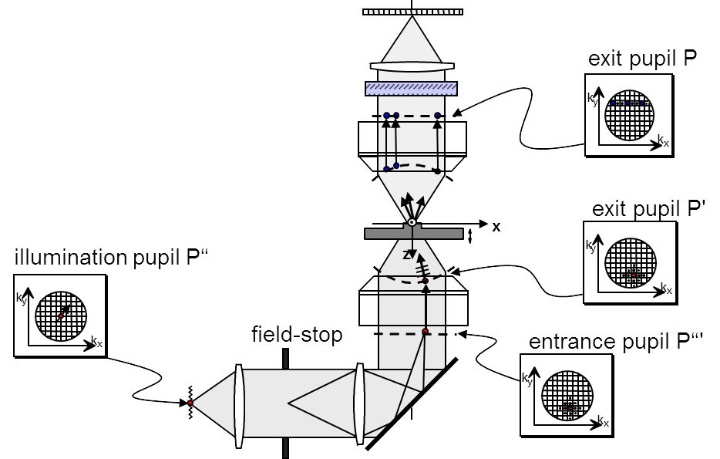 Fig. 3 Simulating the microscopic imaging